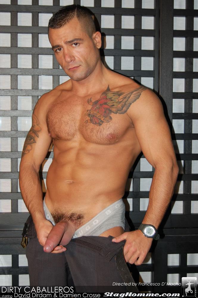 Damien Crosse David Dirdam Stag Homme Hot Muscled Men Gay sex download full movie torrents